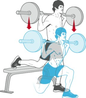 split squats front foot elevated